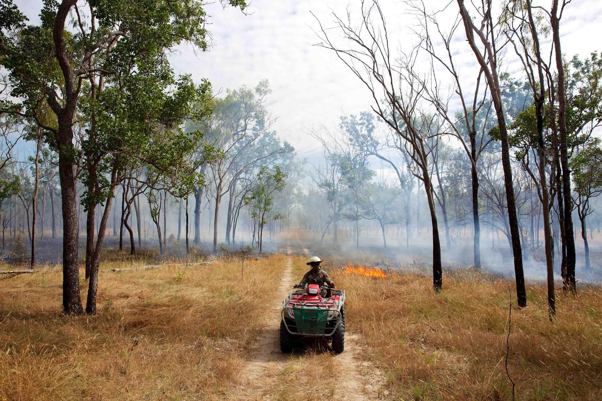 Aboriginal Carbon Foundation's Kowanyama ranger implementing cool burn