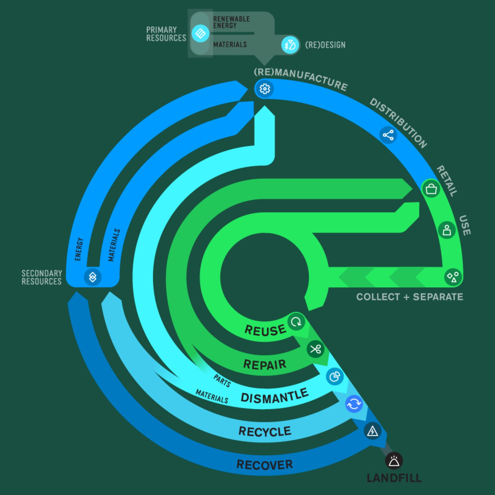 The circular economy is made up of businesses that do one or more of the following: reuse, repair, dismantle, recycle or recover their products.