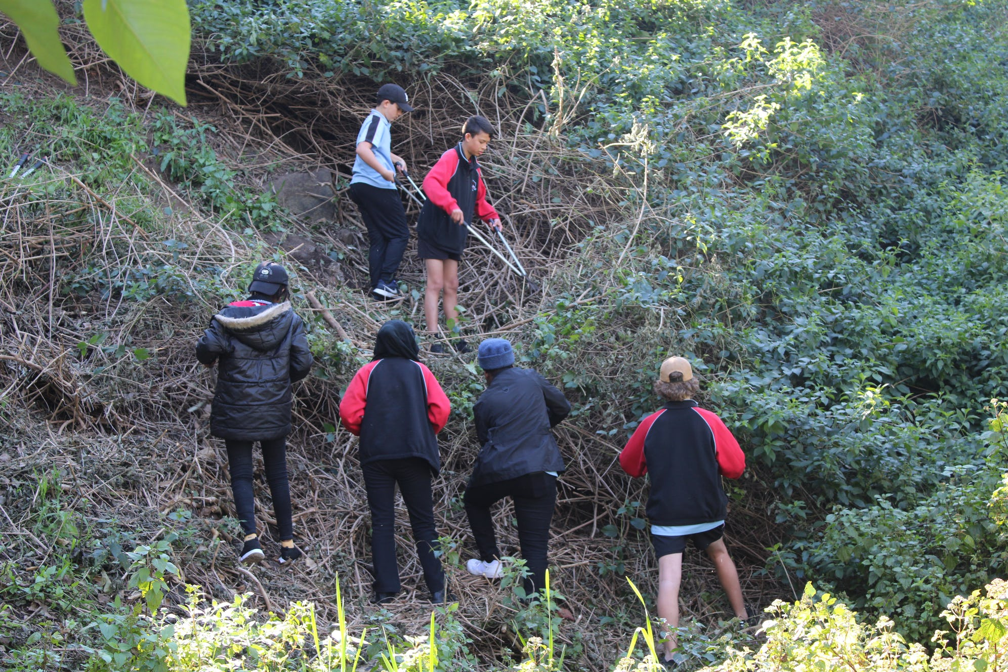 Warrawong students working together to prepare the site